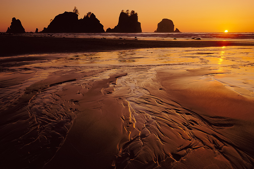 Point of Arches, sunset, summer, Pacific Coast, Olympic National Park, Washington, USA