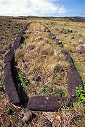 Mare Paenga, Boat shaeped house, Easter Island (Rapa Nui), Chile, South Pacific<br />