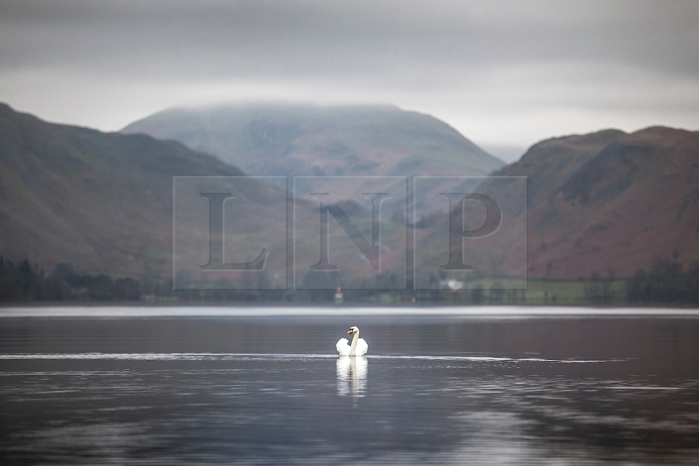 © Licensed to London News Pictures. 14/04/2016. Ullswater UK. A swan sits on the calm water of Ullswater lake in Cumbria this morning. Weather forecasters predict scattered showers in the south & drier in the north.  Photo credit: Andrew McCaren/LNP