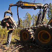 100212       Brian Leddy<br /> Mike Wanick sharpens the the blades on the chainsaw of his timber harvesting machine in the Zuni Mountains. Wanick owns the company Forest Restoration Management and has ben contracted by the National Forest Service to thin timber in a section of the Cibola National Forest.
