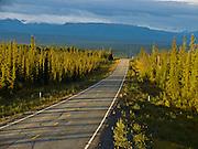 Low sunset light casts tree shadows on the Edgerton Highway in Alaska, USA.