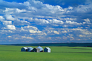 graineries and clouds<br /> THREE HILLS<br /> Alberta<br /> Canada