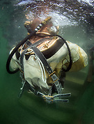 Diver in US Navy Mark-V commercial diver at Dutch Springs, Scuba Diving Resort in Bethlehem, Pennsylvania