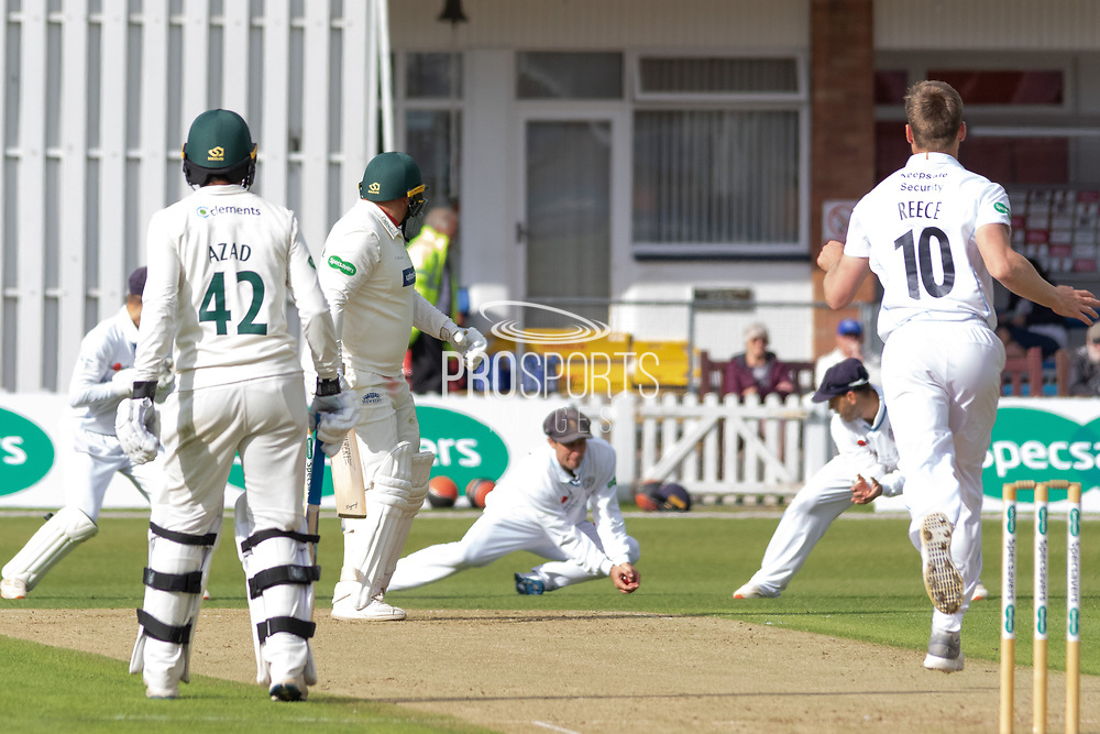 Wayne Madsen catches Mark Cosgrove at first slip off Luis Reece during the Specsavers County Champ Div 2 match between Leicestershire County Cricket Club and Derbyshire County Cricket Club at the Fischer County Ground, Grace Road, Leicester, United Kingdom on 27 May 2019.