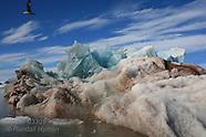 33: SVALBARD ICE SHAPES