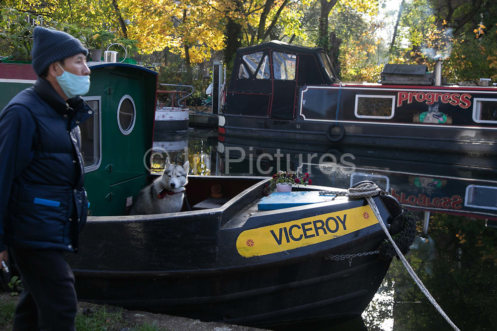 A man walks past a dog sitting on a house boat on Regents Canal the third day of the second coronavirus national lockdown on 7th of November 2020, East London, United Kingdom. The lockdown restrictions mean that people are only allowed to meet outside, in pairs and only if keeping social distance. Only if they already live together or have formed a social bubble can they interact freely.