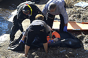 Oct. 15, 2015 - Lesbos Island, Greece - <br /> <br /> European Migrant Crisis<br /> <br /> Fatal Accident at sea caused at least nine deaths among migrants that in  thousands lands every day on the shores of the island of Lesbos from neighboring Turkey , distant only 4 nautical miles. Dead bodies are pulled out of the sea after greek coastguard vessel hits migrant boat.<br /> ©Exclusivepix Media