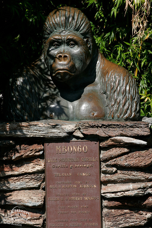 San Diego Zoo, California (SD)