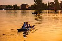 Shikaras (boats) on Dal Lake at sunset, Srinagar, Kashmir, Jammu and Kashmir State; India.