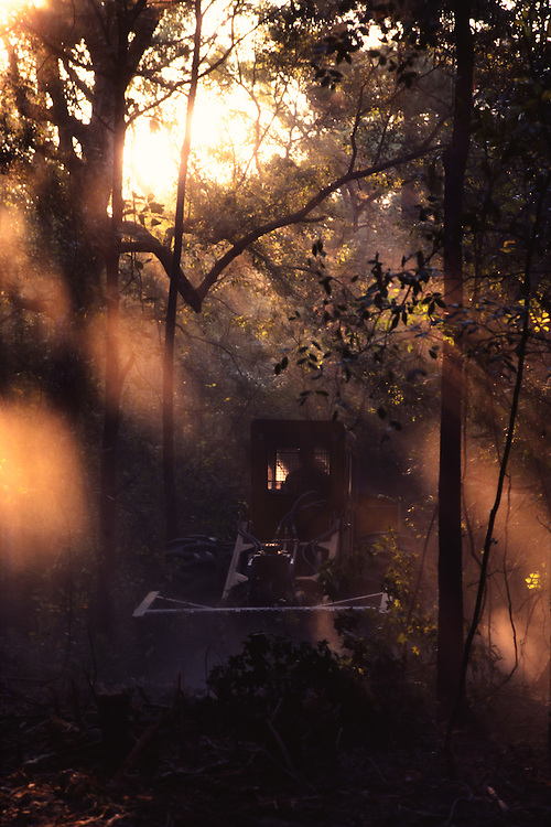 Tractor stirring up the dust while clearing trees for future development by Weingarten Reality in Texas. Sunbeams are captured in the dust floating in the air.