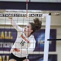 University of Northwestern-St. Paul Eagles vs. Wartburg College Knights
