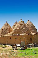 """Pictures of the beehive adobe buildings of Harran, south west Anatolia, Turkey.  Harran was a major ancient city in Upper Mesopotamia whose site is near the modern village of Altınbaşak, Turkey, 24 miles (44 kilometers) southeast of Şanlıurfa. The location is in a district of Şanlıurfa Province that is also named """"Harran"""". Harran is famous for its traditional 'beehive' adobe houses, constructed entirely without wood. The design of these makes them cool inside. 37 .<br /> <br /> If you prefer to buy from our ALAMY PHOTO LIBRARY  Collection visit : https://www.alamy.com/portfolio/paul-williams-funkystock/harran.html<br /> <br /> Visit our TURKEY PHOTO COLLECTIONS for more photos to download or buy as wall art prints https://funkystock.photoshelter.com/gallery-collection/3f-Pictures-of-Turkey-Turkey-Photos-Images-Fotos/C0000U.hJWkZxAbg ."""