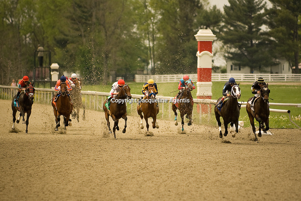 Keeneland Racetrack. Lexington, KY #79 April 24, 2008