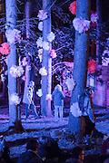 Roaming the decorated woods - The 2016 Latitude Festival, Henham Park, Suffolk.