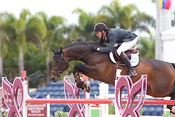 Gundersen Henrik (DEN) - Quintender 2<br /> Horseware GP CSI 2*<br /> Wellington 2012<br /> © Hippo Foto - Cealy Tetly