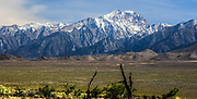 Snow Capped Mountains In The Eastern Sierra Nevada