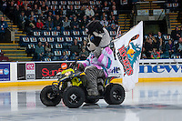 KELOWNA, CANADA - FEBRUARY 10: Rocky Racoon, the mascot of the Kelowna Rockets rides his polaris quad onto the ice at the start of the game against the Vancouver Giants on February 10, 2017 at Prospera Place in Kelowna, British Columbia, Canada.  (Photo by Marissa Baecker/Shoot the Breeze)  *** Local Caption ***