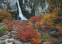 Fall color in the foreground of Salto Chorrillo in Los Glaciares National Park, Argentina