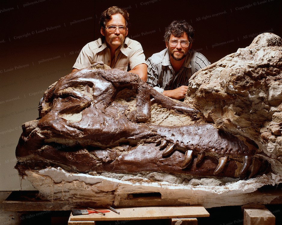 """""""Sue,"""" the largest and most complete tyrannosaur ever found, with Pete (left) and brother, Neal Larson.  Sue was named after her discoverer, Sue Hendrickson as per the policy of their company, the Black Hills Institute."""