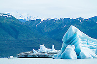 Icebergs in Alsek Lake. Glacier Bay National Park, AK.