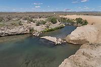 Bog Hot Springs Nevada