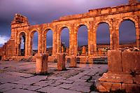 Maroc, Site de Volubilis,  Basilique // Basilica, Volubilis site, Morocco