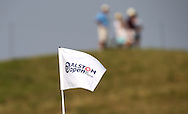 Pinflag during Round One of the 2015 Alstom Open de France, played at Le Golf National, Saint-Quentin-En-Yvelines, Paris, France. /02/07/2015/. Picture: Golffile | David Lloyd<br /> <br /> All photos usage must carry mandatory copyright credit (© Golffile | David Lloyd)