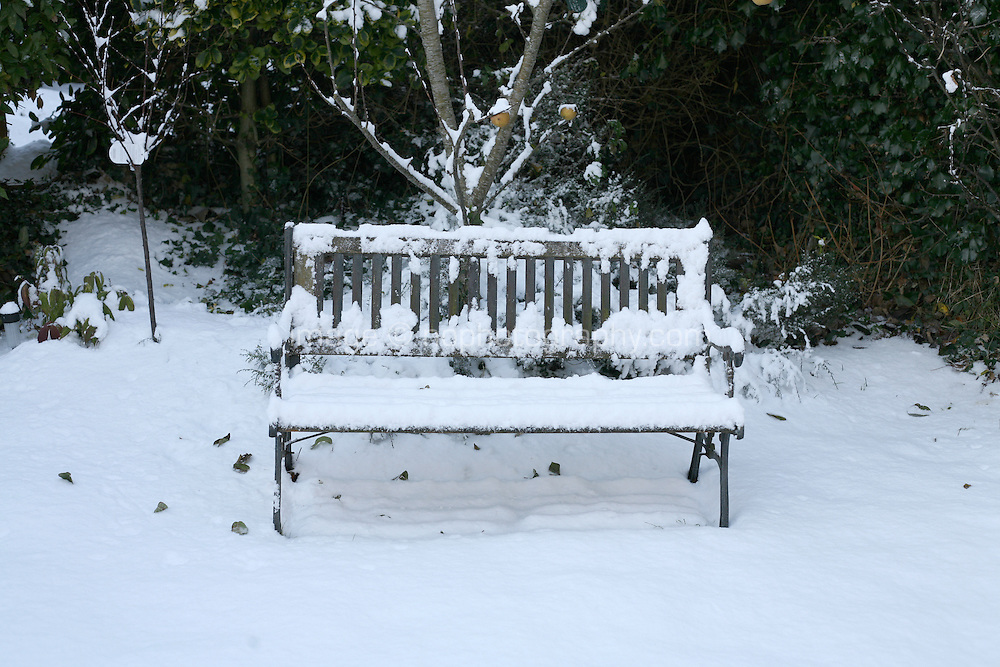 Snow covered bench and apple tree