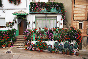 House with hundreds of flowers in front, Berceo, Rioja, Spain.
