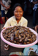 A Cambodian saleswoman holds a plastic tray full of cooked cicadas, one of many varieties found in Phnom Penh's Central Market, Phnom Penh, Cambodia. (Man Eating Bugs: The Art and Science of Eating Insects page 47)