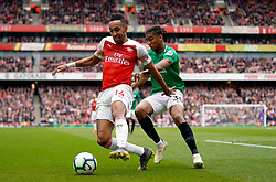 Arsenal's Pierre-Emerick Aubameyang (left) and Brighton & Hove Albion's Bernardo battle for the ball during the Premier League match at the Emirates Stadium, London.