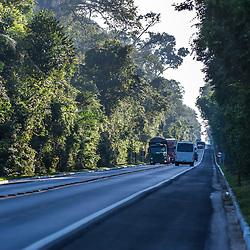 """""""Rodovia BR 101 (Estrada) fotografado em Linhares e Sooretama, Espírito Santo -  Sudeste do Brasil. Bioma Mata Atlântica. Registro feito em 2014.<br /> <br /> <br /> <br /> ENGLISH: BR-101 Transcoastal Highway photographed in Linhares and Sooretama, Espírito Santo - Southeast of Brazil. Atlantic Forest Biome. Picture made in 2014."""""""