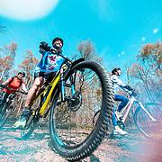Three mountain biker cyclists enjoying a healthy lifestyle.