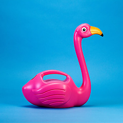 "April 5, 2017 - inconnu - Here's an indoor watering can that will sit proudly as an ornament when not in use – shaped like an elegant pink flamingo.The team behind the design say it will put an end to filling up plastic bottles and coffee mugs to water indoor greenery.It holds 1.5 litres and is filled via a hole in the rump.It costs £10 GBP / € 11.70 Euros / $ 12.50 USD from online shopping site firebox.com.A spokesman said:"" Its pink-plumed tummy and adds some much-needed colour and fun to the proceedings. ""Whether it's sat on your desk at work or the window sill at home – it just looks majestic. ""Best of all, it doubles up as one of the greatest cocktail dispensers of all time – we can't think of a more fitting vessel to serve up a boozy tropical punch."" # ARROSOIR FLAMANT ROSE (Credit Image: © Visual via ZUMA Press)"