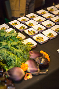 JAPANESE SEED PROJECT<br />