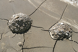 Formations of Sediments Along the Santa Clara River