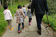 Visitors to Yamaguchi farm head up the mountain to dig bamboo shoots, Otaki, Chiba prefecture, Japan, April 29, 2011.