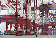 Workers operate on the docks of Qingdao Port in Qingdao, Shandong Province, China on 23 August 2012. Qingdao is recognized as one of the most livable cities in China.