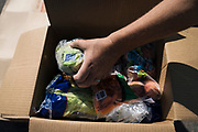 Fruits and vegetables are packed into boxes at a pop up grocery at Prairie Winds Middle School in Mankato, Minnesota, U.S. on Thursday, July 23, 2020. Photographer: Ben Brewer/Bloomberg