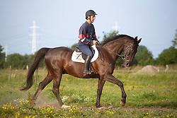 De Smet Stefaan (BEL) - Quick Misaura<br /> De Maltahoeve - Lokeren 2010<br /> © Dirk Caremans