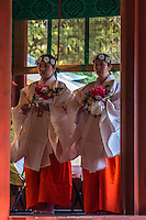 Miko or Shinto shrine maidens' duties are sacred cleansing, performing rituals as well as traditional kagara dance.