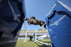 Alexander Edwina, (AUS), Ego Van Orti<br /> Longines Global Champions Tour - Grand Prix of Hamburg<br /> Hamburg - Hamburger Derby 2016<br /> © Hippo Foto - Stefan Lafrentz