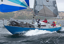 The third days racing at the  Silvers Marine Scottish Series 2015, organised by the  Clyde Cruising Club<br /> Based at Tarbert,  Loch Fyne from 22rd-24th May 2015<br /> <br /> GBR600C, She of the North, Kenneth Halliwell, RUYC, She Delta<br /> <br /> <br /> Credit : Marc Turner / CCC<br /> For further information contact<br /> Iain Hurrel<br /> Mobile : 07766 116451<br /> Email : info@marine.blast.com<br /> <br /> For a full list of Silvers Marine Scottish Series sponsors visit http://www.clyde.org/scottish-series/sponsors/