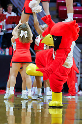 NORMAL, IL - November 03: Reggie Redbird during a college basketball game between the ISU Redbirds  and the Augustana Vikings on November 03 2018 at Redbird Arena in Normal, IL. (Photo by Alan Look)