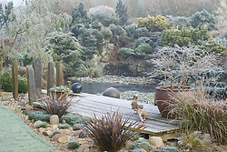 The frozen pond and deck on a frosty winter's morning. Container of Prunus incisa 'Kojo-no-mai', wooden duck ornaments and slate posts. Conifers on rock garden beyond. Design: John Massey, Ashwood Nurseries