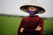 Vietnam. March 12th 2007. .A Vietnamese woman in a paddy field on the road between Hanoi and Ha Long.