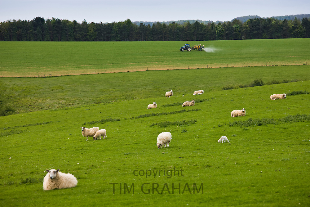 Farmer spraying crops in traditional farm scene near Broadway in the Cotswolds, Worcestershire, UK