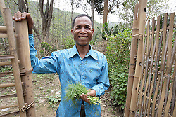 People have  gathered for an Older People's Group meeting where they will discuss individual and group needs. Sisumang 56 years old is harvesting herbs from his vegetable plot, part of the project that HelpAge has started in the village by providing seeds<br /> Had Yen Village, Pakseng District, Luang Prabang Province, Lao PDR