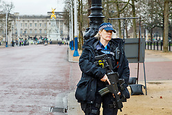© Licensed to London News Pictures. 16/01/2017. London, UK. Extra police officers and armed police officers guard Changing the Guard ceremony outside Buckingham Palace in London on 16 January 2017. New arrangement come after security was stepped up in the wake of the Berlin terror attack in December. Photo credit: Tolga Akmen/LNP