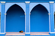 A dog sleeps along the colonnade of a brightly painted home in Tlacotalpan, Veracruz, Mexico. The tiny town is painted a riot of colors and features well preserved colonial Caribbean architectural style dating from the mid-16th-century.